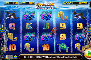 Stellar Jackpots With Dolphin Gold